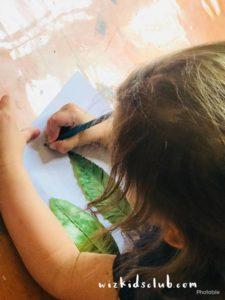 Nature Study - Preschool Activity